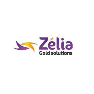 Ceci est le logo de l'entreprise Zélia. Il s'agit d'une société malienne qui innove dans le secteur du paiement.