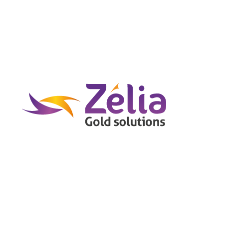 Logo graphique de Zélia Gold Solutions